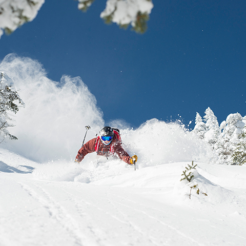 Skier in deep powder in the whiteface slides.